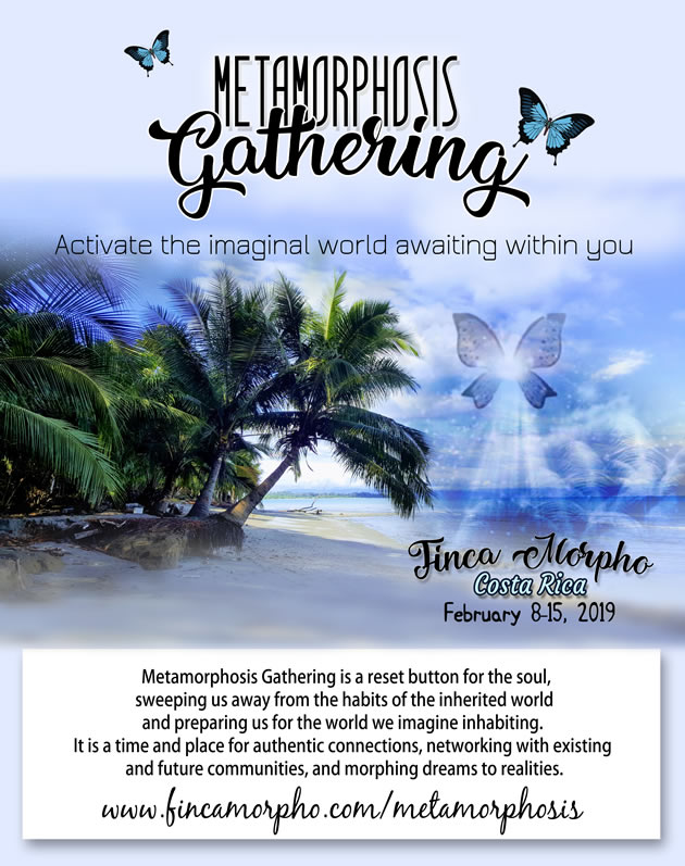metamorphosis-gathering-costa-rica
